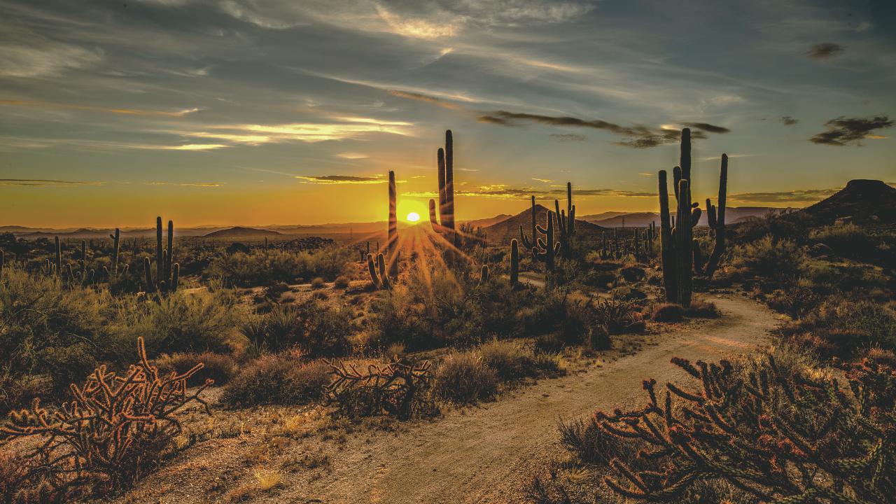 Scottsdale on a Budget: A Budget-Friendly Guide to Scottsdale, Arizona