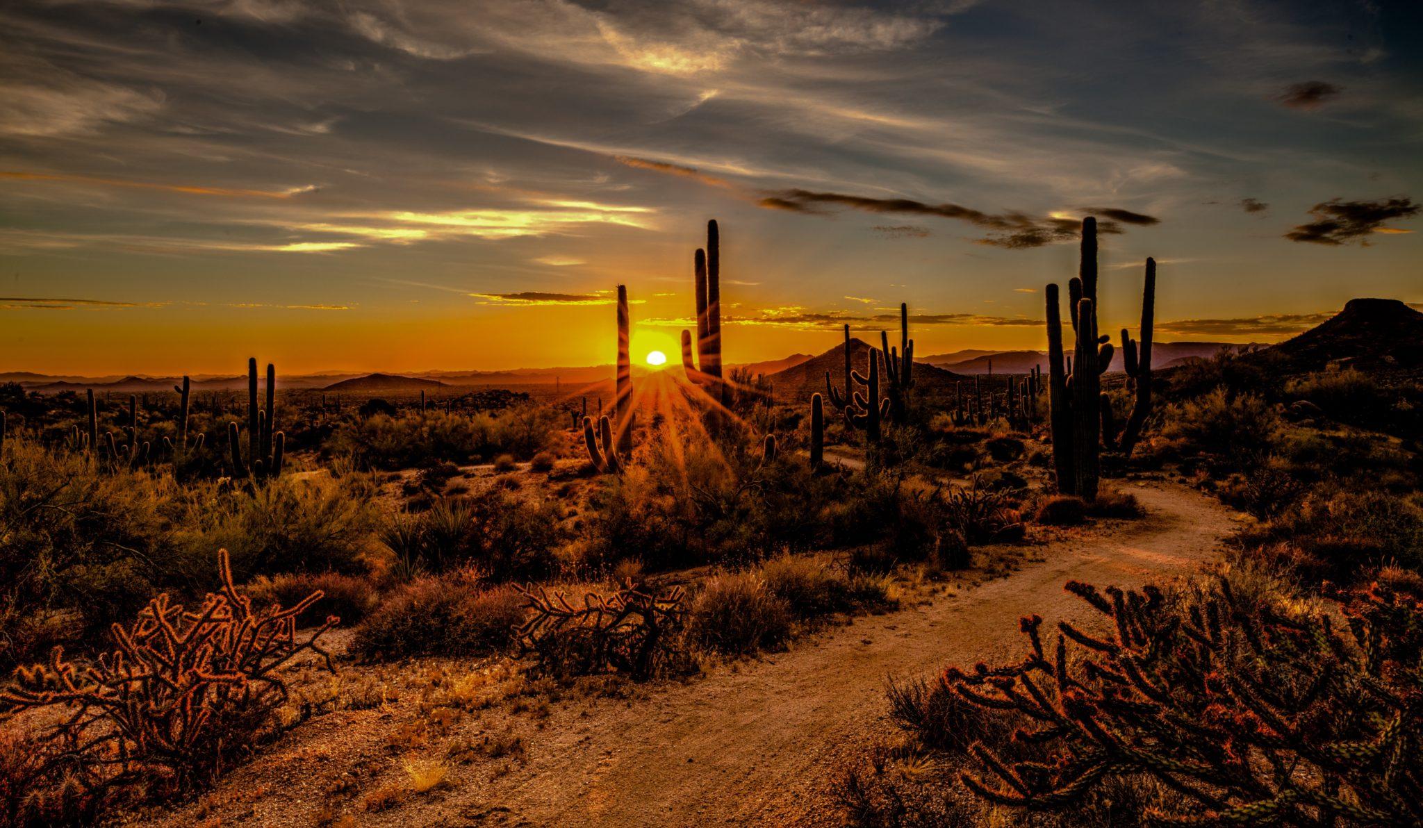 temperature in scottsdale arizona