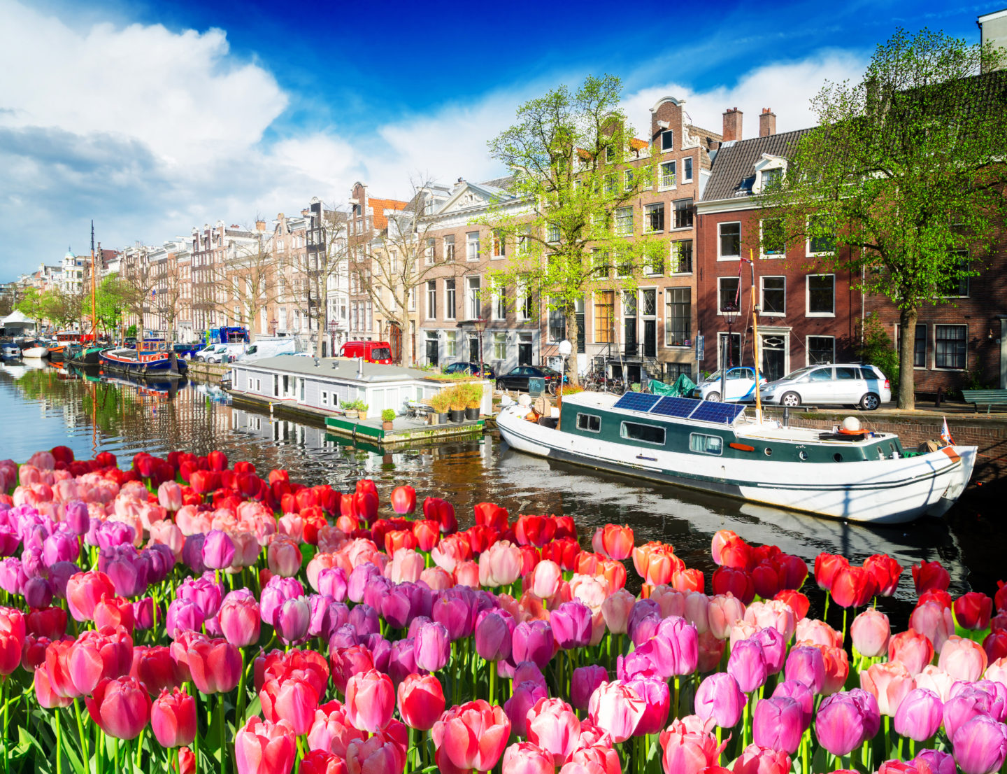 The Ultimate Amsterdam Bucket List • a world in reach